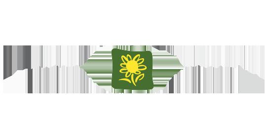 Arnica Montana Hotel